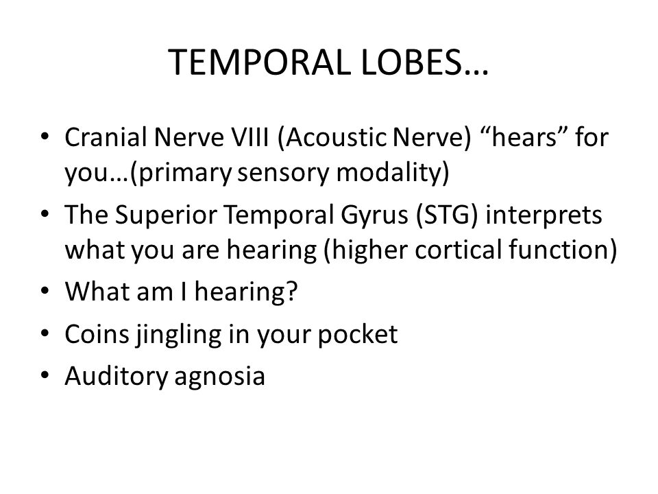 TEMPORAL LOBES… Cranial Nerve VIII (Acoustic Nerve) hears for you…(primary sensory modality)