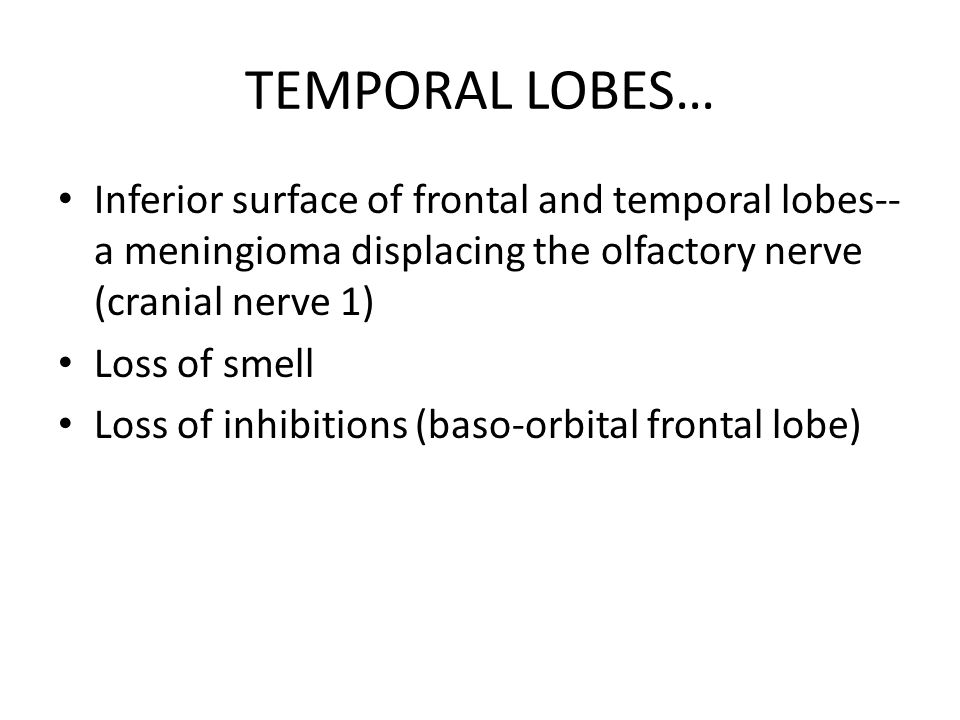 TEMPORAL LOBES… Inferior surface of frontal and temporal lobes--a meningioma displacing the olfactory nerve (cranial nerve 1)
