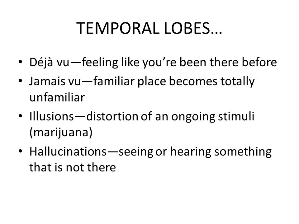 TEMPORAL LOBES… Déjà vu—feeling like you're been there before