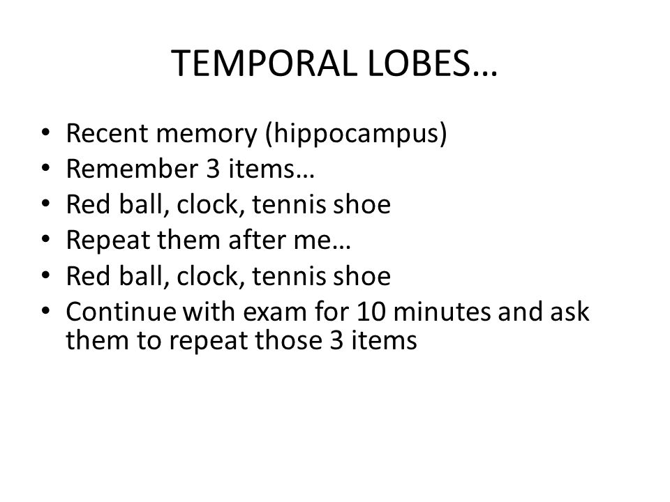 TEMPORAL LOBES… Recent memory (hippocampus) Remember 3 items…