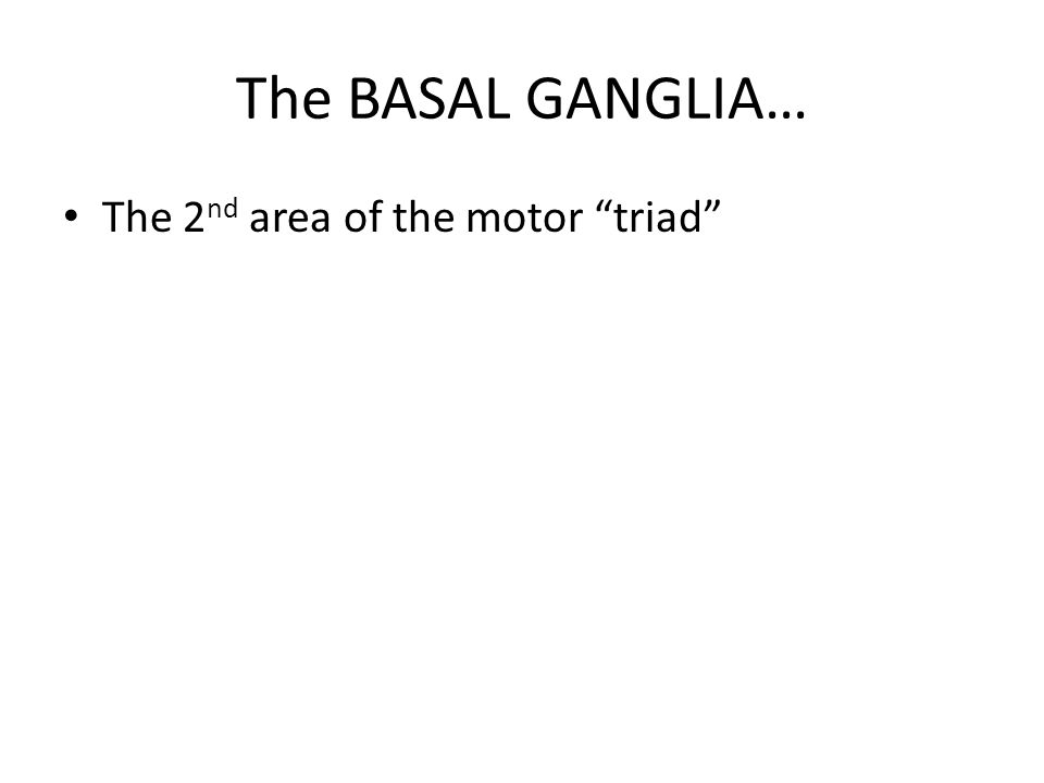 The BASAL GANGLIA… The 2nd area of the motor triad