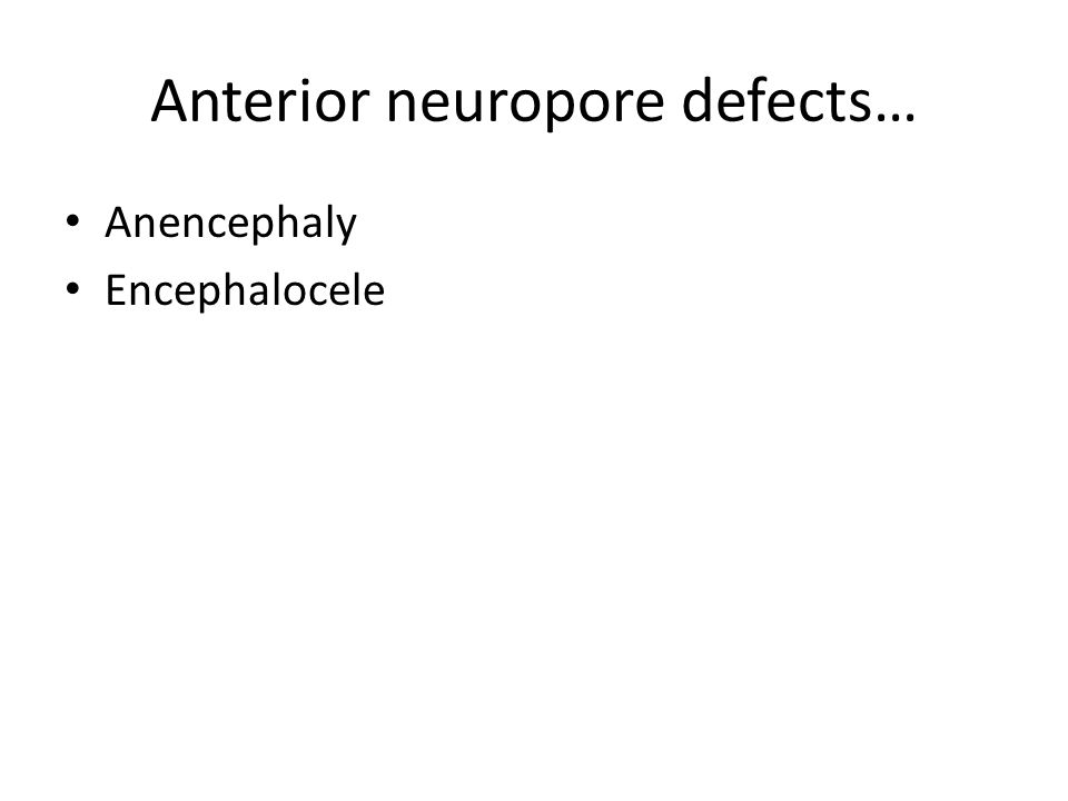 Anterior neuropore defects…
