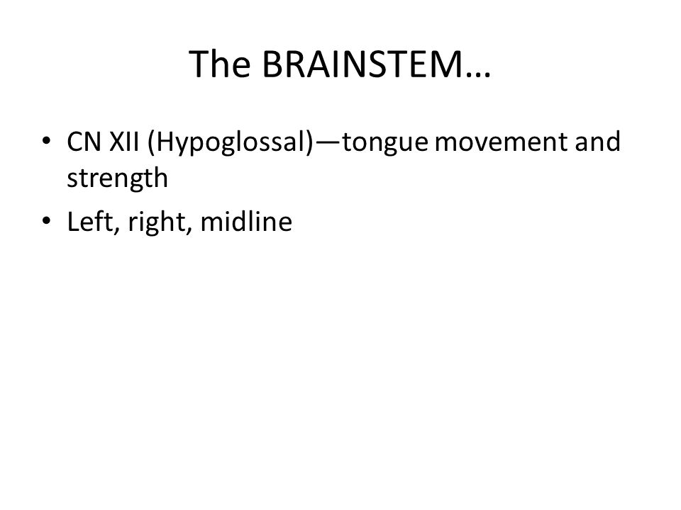 The BRAINSTEM… CN XII (Hypoglossal)—tongue movement and strength