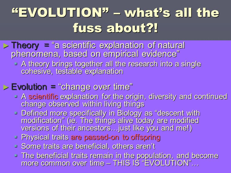 EVOLUTION – what's all the fuss about !