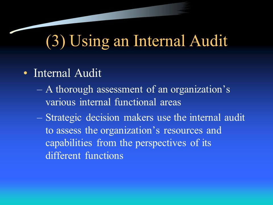 (3) Using an Internal Audit