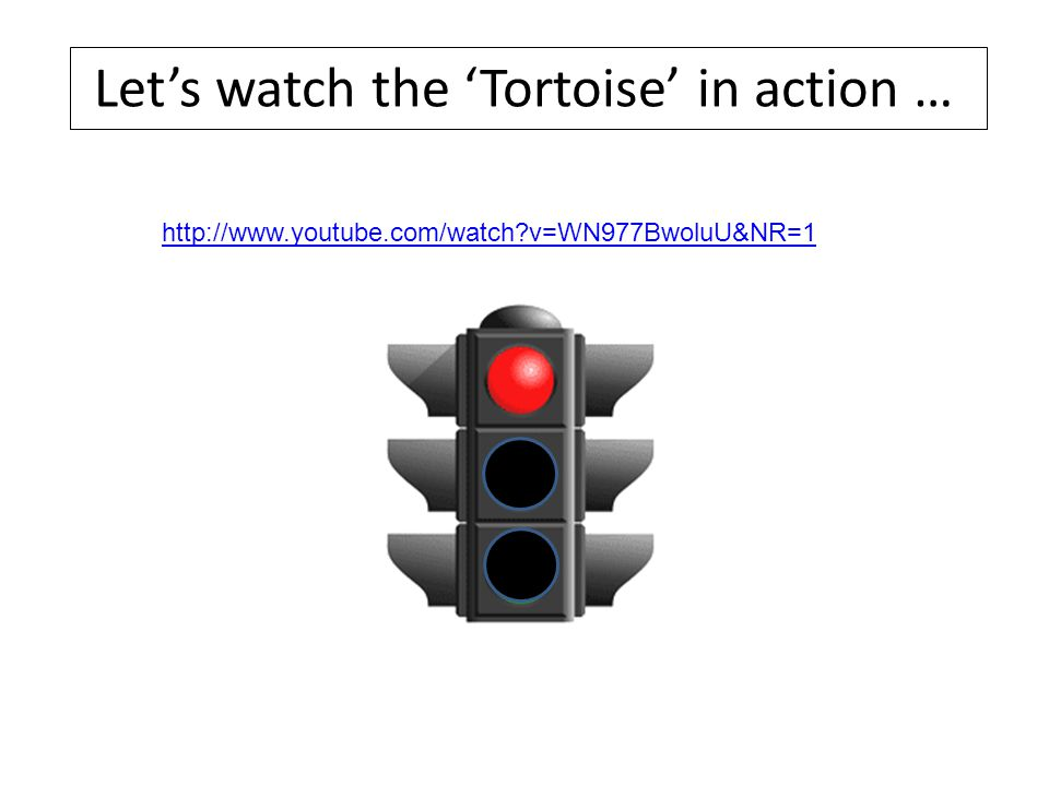 Let's watch the 'Tortoise' in action …