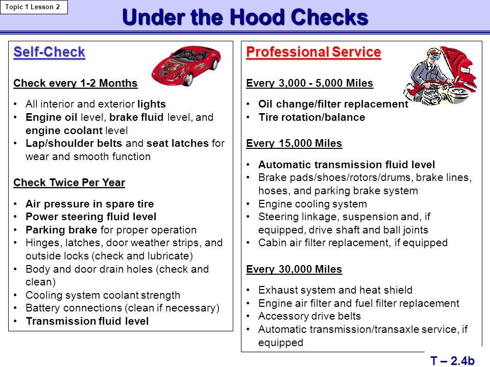 Under the Hood Checks Self-Check Professional Service T – 2.4b