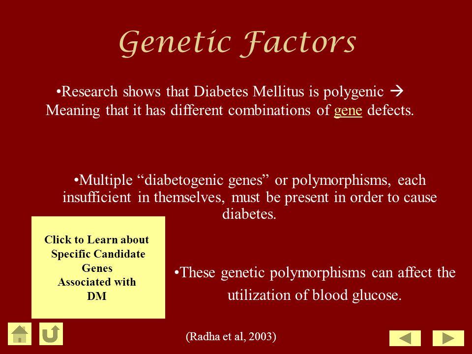 Genetic Factors Research shows that Diabetes Mellitus is polygenic 