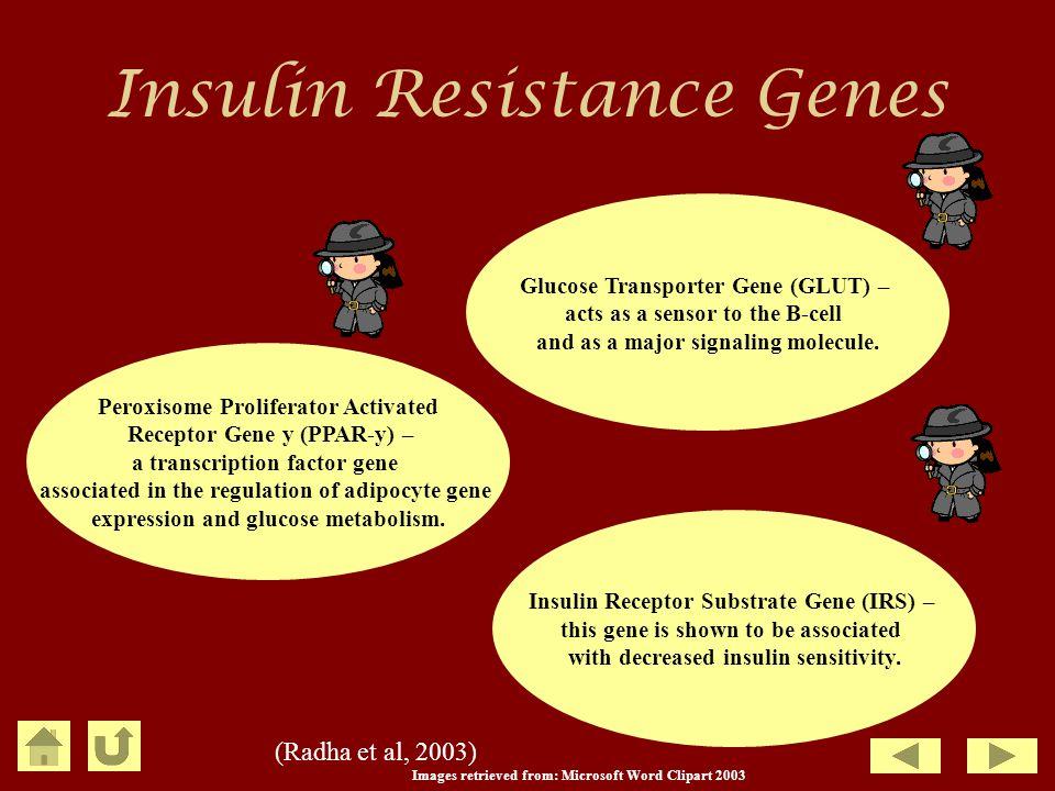 Insulin Resistance Genes