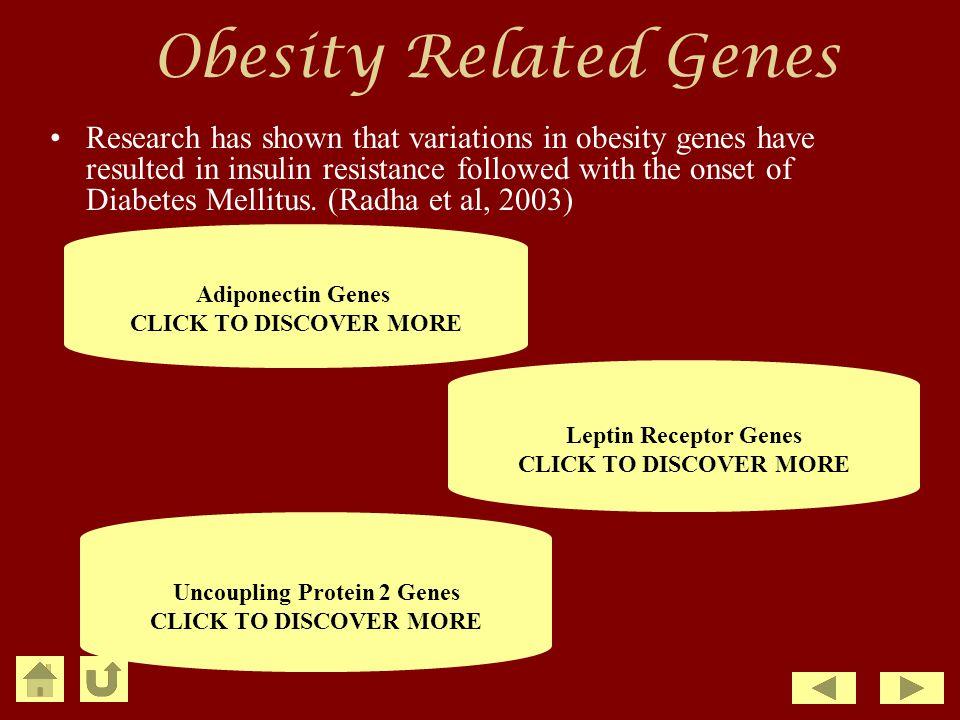 Obesity Related Genes