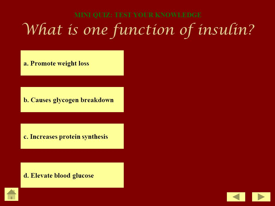 What is one function of insulin