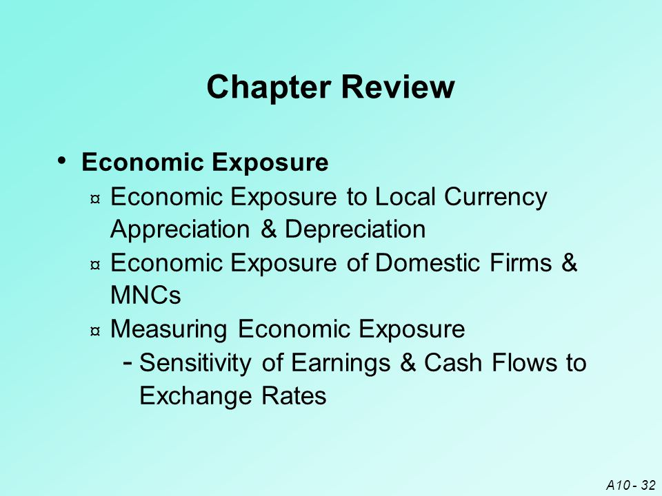 Chapter Review Economic Exposure