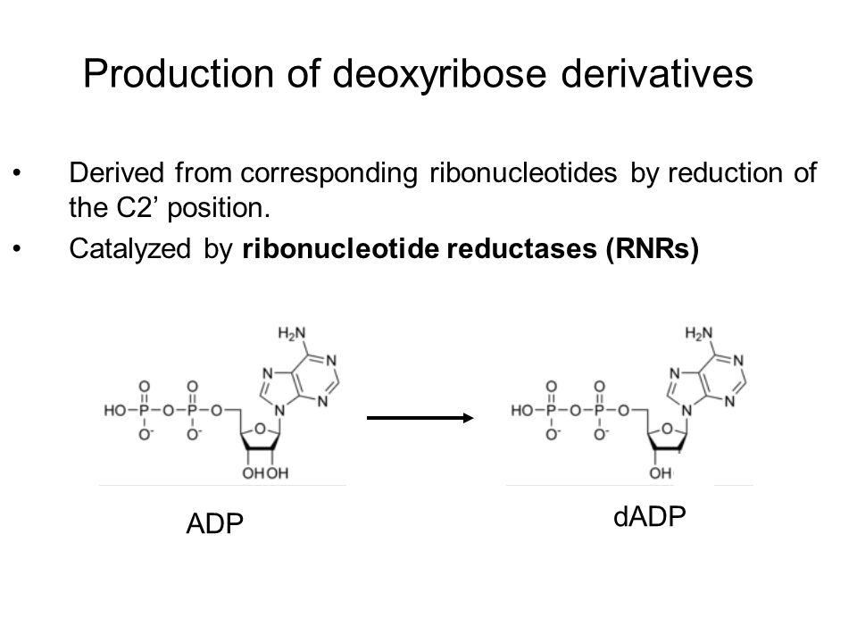 Production of deoxyribose derivatives