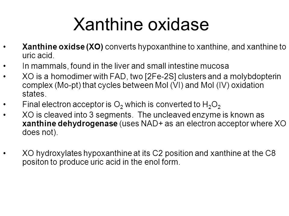 Xanthine oxidase Xanthine oxidse (XO) converts hypoxanthine to xanthine, and xanthine to uric acid.