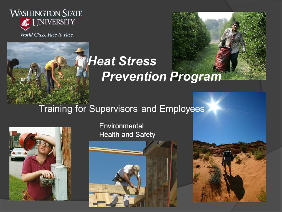 Training for Supervisors and Employees