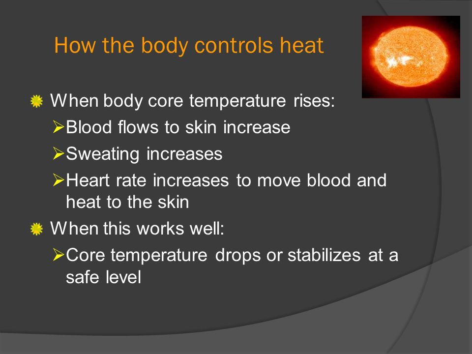 How the body controls heat