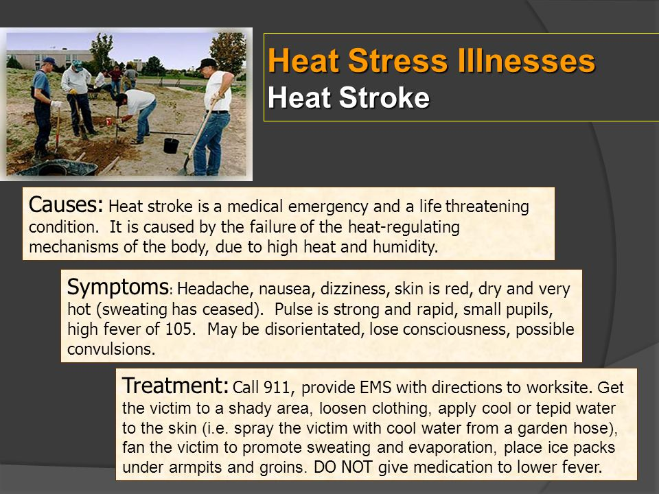 Heat Stress Illnesses Heat Stroke
