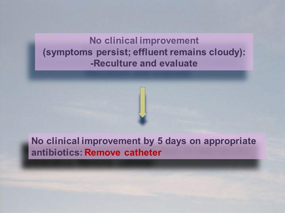 No clinical improvement (symptoms persist; effluent remains cloudy):
