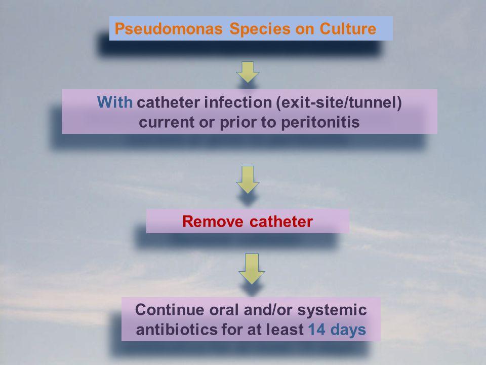 Pseudomonas Species on Culture