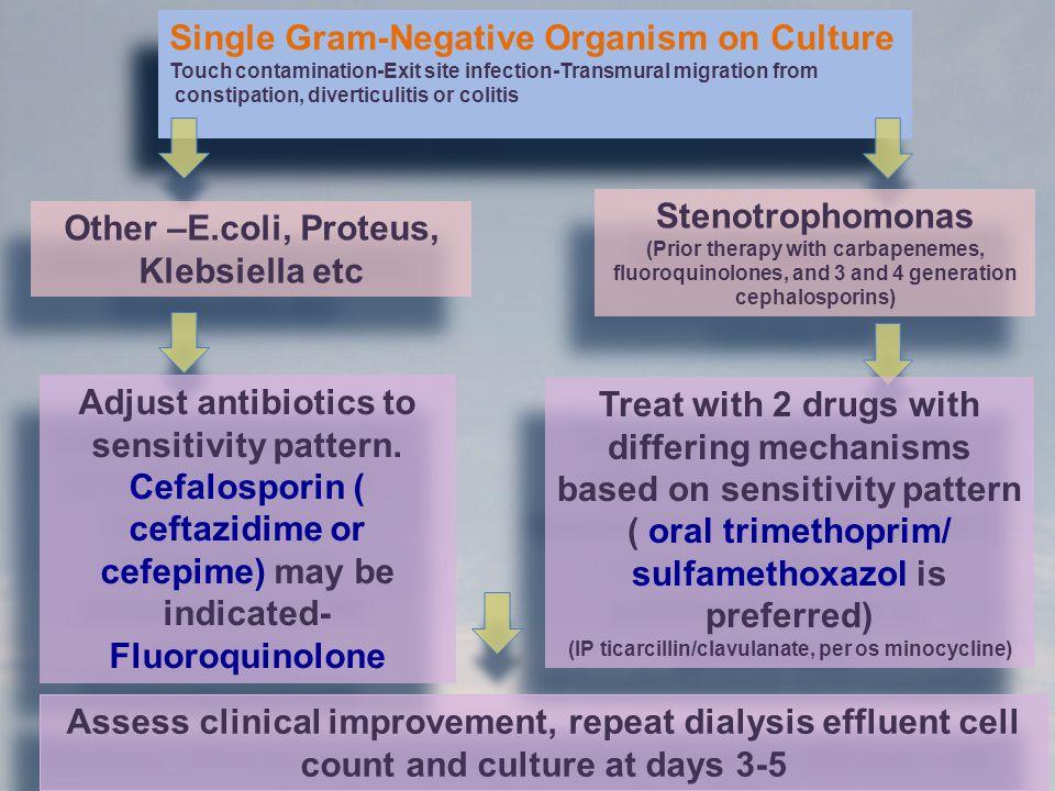 Single Gram-Negative Organism on Culture