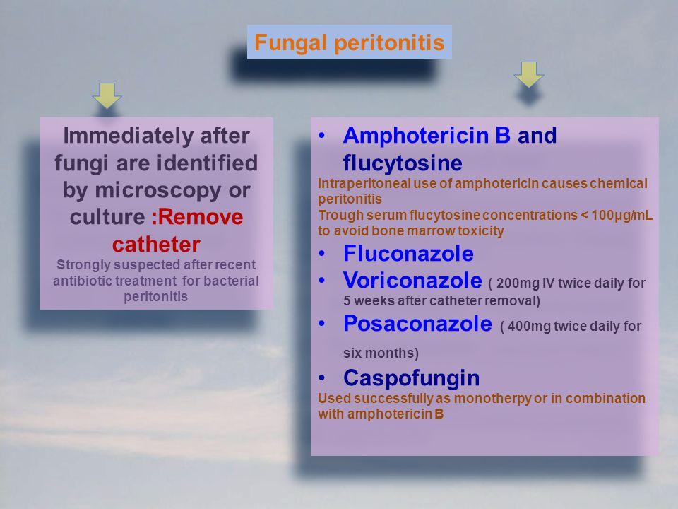 Amphotericin B and flucytosine