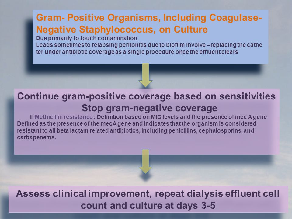 Gram- Positive Organisms, Including Coagulase-
