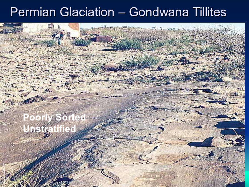 Permian Glaciation – Gondwana Tillites