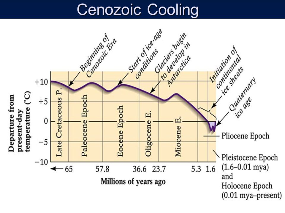 Cenozoic Cooling