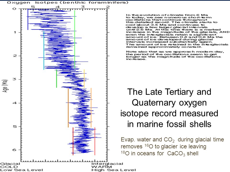 The Late Tertiary and Quaternary oxygen isotope record measured in marine fossil shells