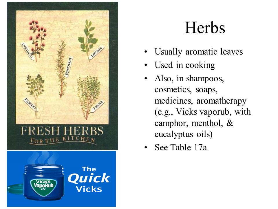 Herbs Usually aromatic leaves Used in cooking