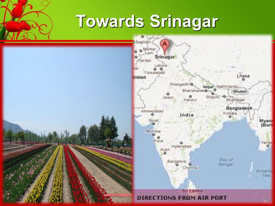 Towards Srinagar