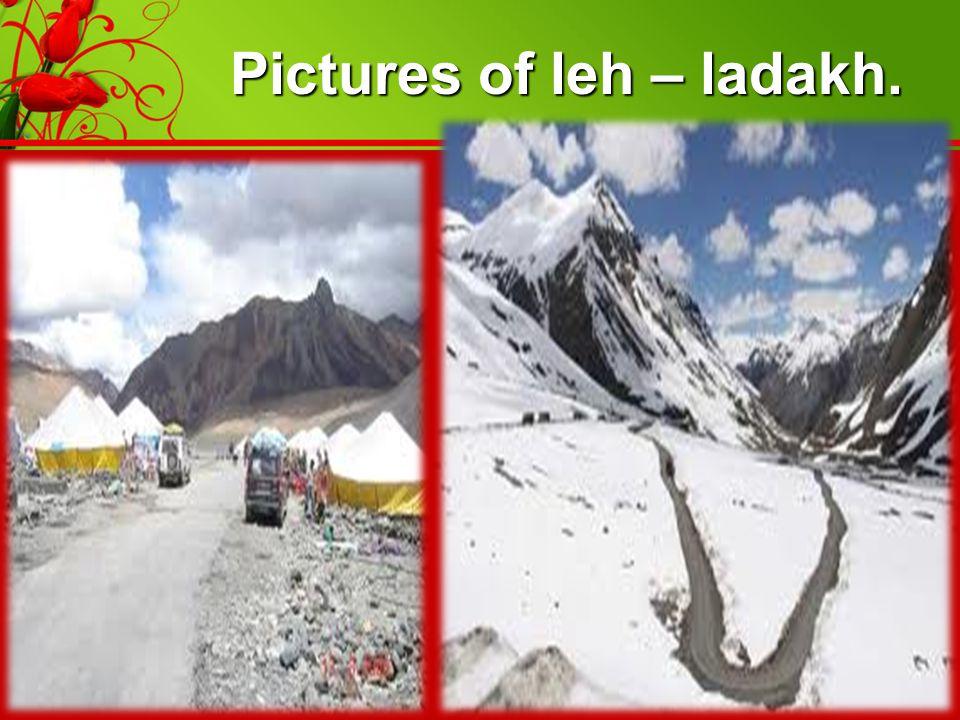 Pictures of leh – ladakh.