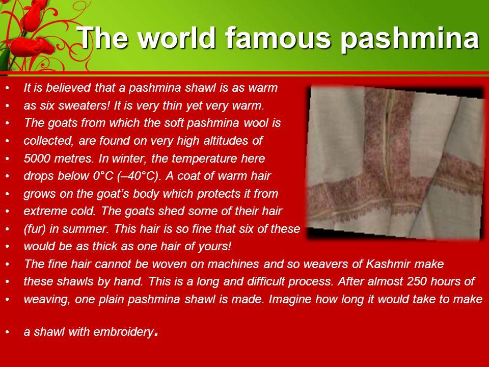 The world famous pashmina