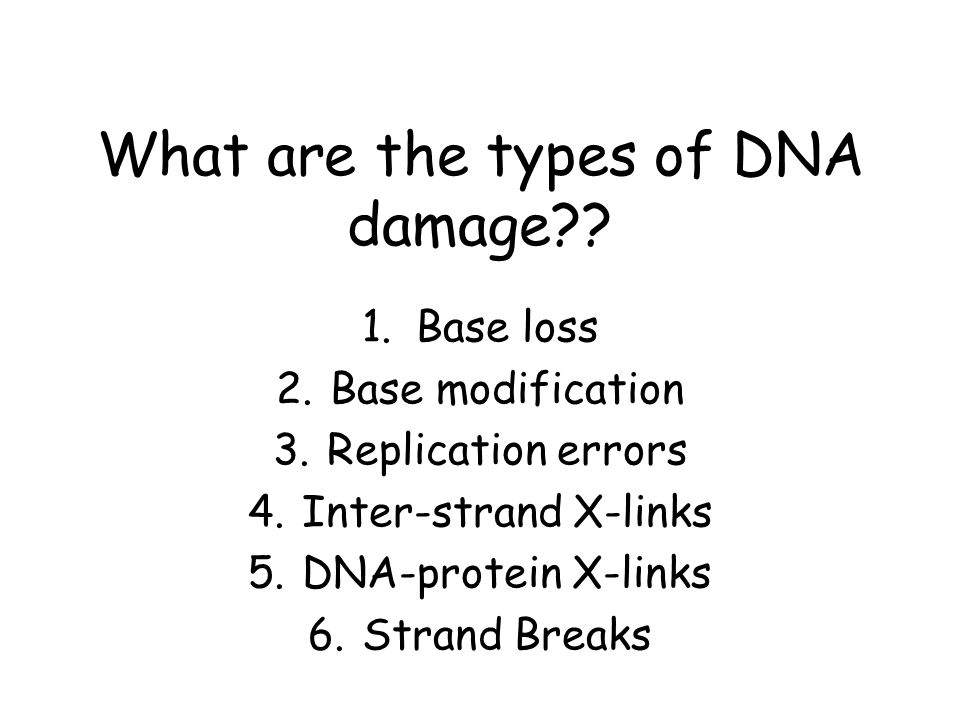 What are the types of DNA damage