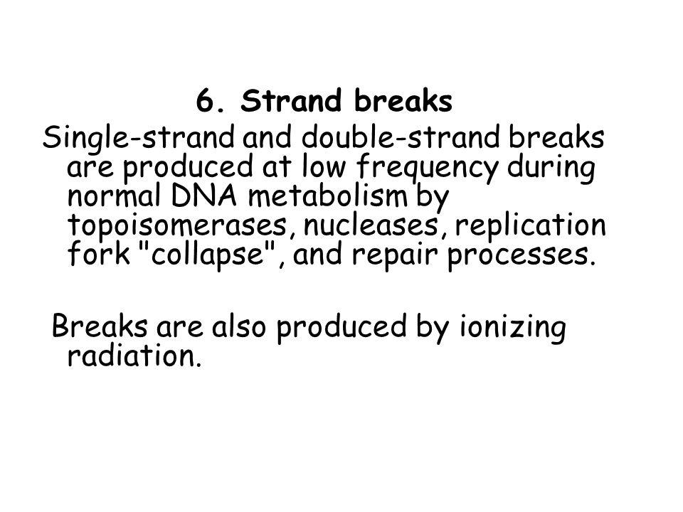 6. Strand breaks