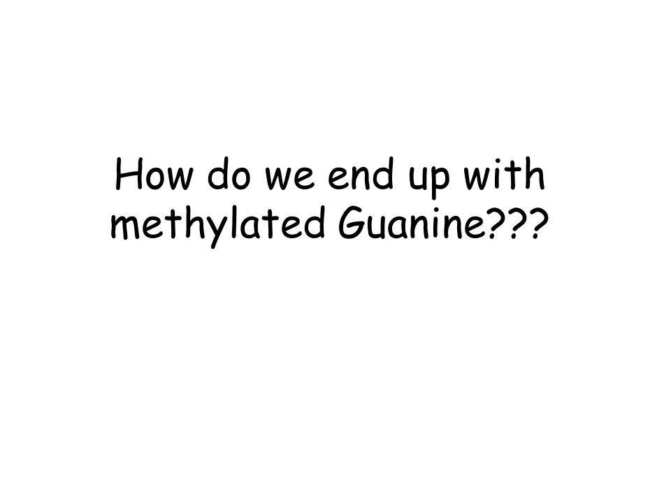 How do we end up with methylated Guanine