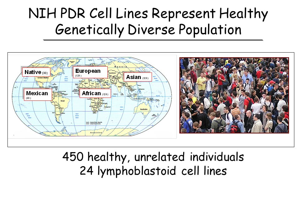 NIH PDR Cell Lines Represent Healthy Genetically Diverse Population