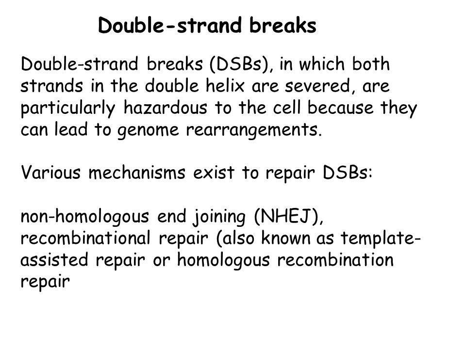 Double-strand breaks
