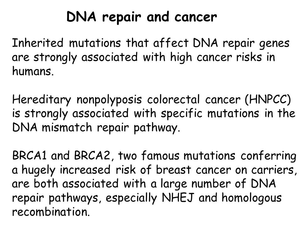 DNA repair and cancer Inherited mutations that affect DNA repair genes are strongly associated with high cancer risks in humans.