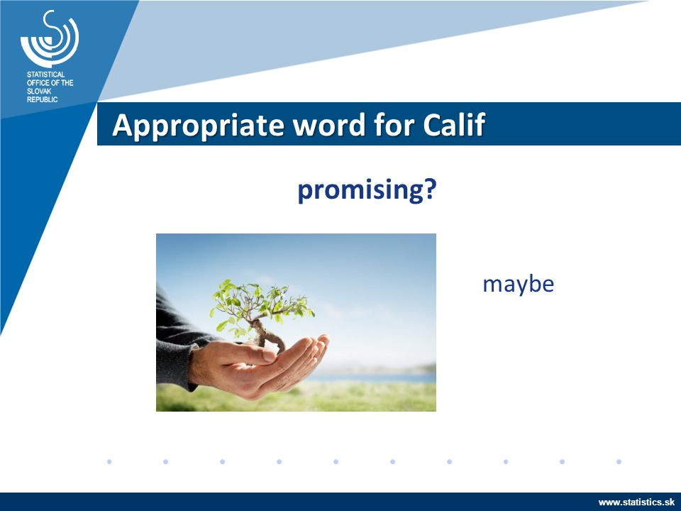 Appropriate word for Calif