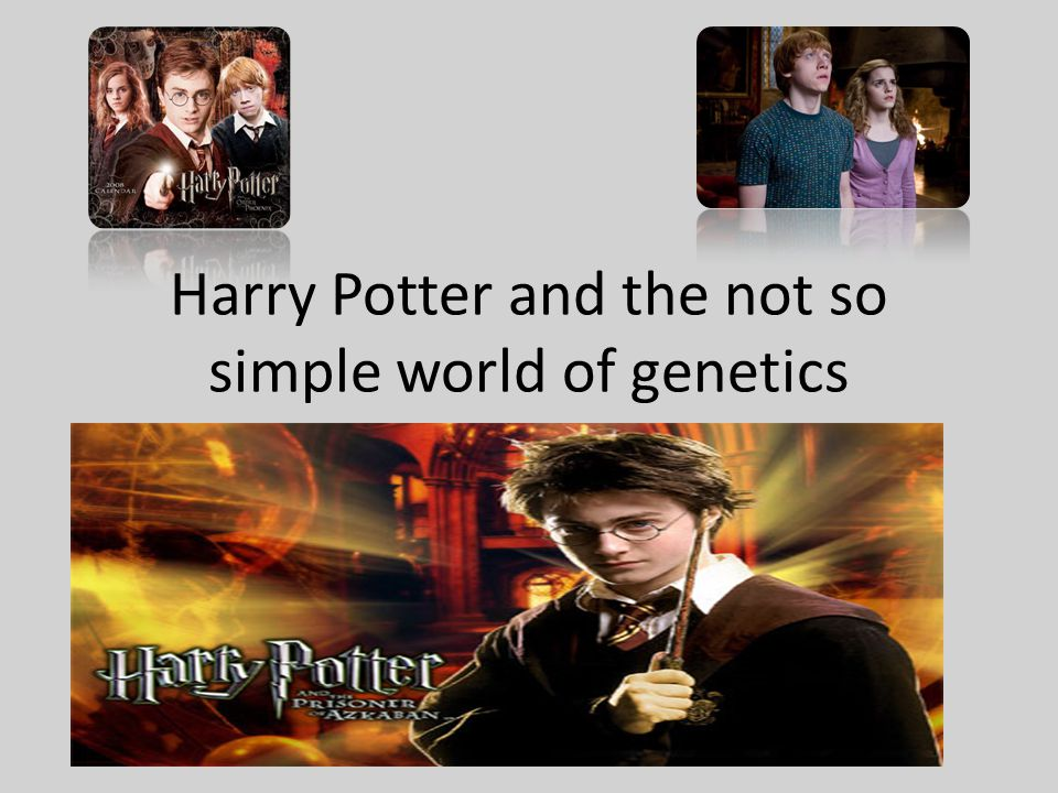 Harry Potter and the not so simple world of genetics