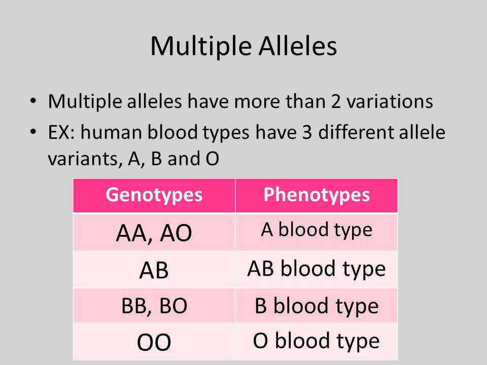 Multiple Alleles AA, AO AB OO AB blood type BB, BO B blood type
