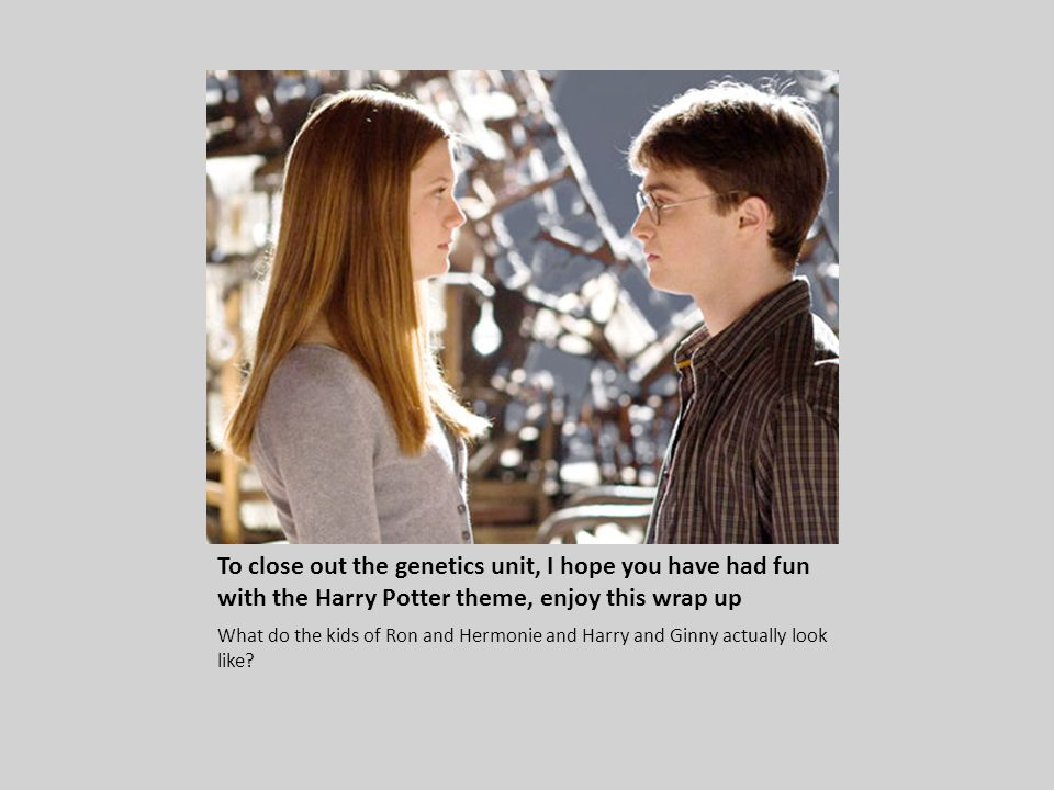 To close out the genetics unit, I hope you have had fun with the Harry Potter theme, enjoy this wrap up