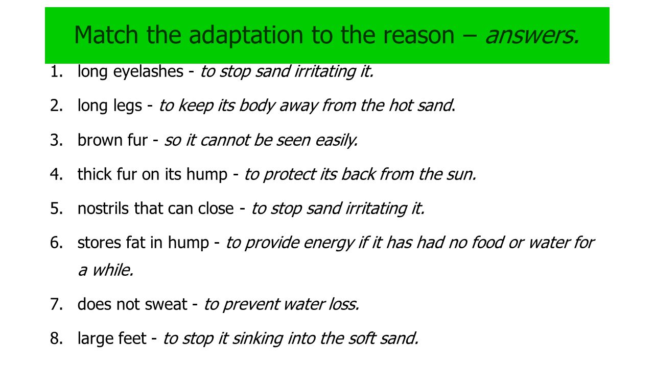 Match the adaptation to the reason – answers.