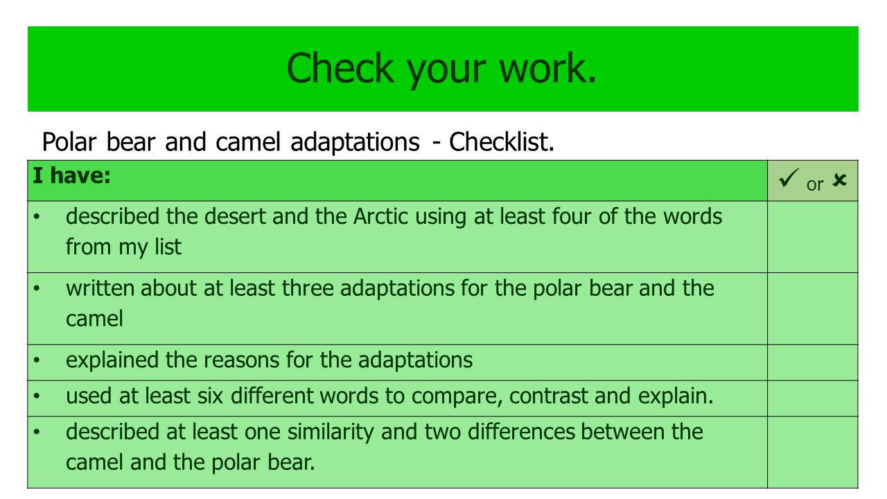 Check your work.  or  Polar bear and camel adaptations - Checklist.