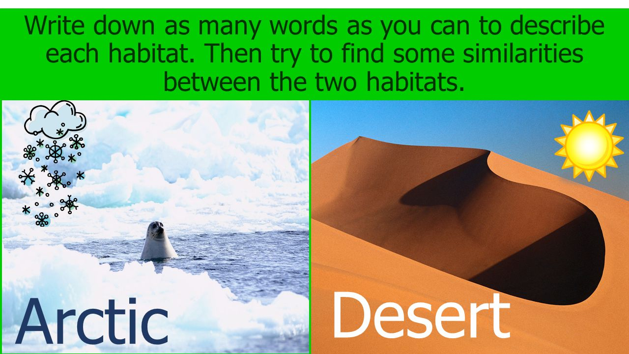 Write down as many words as you can to describe each habitat