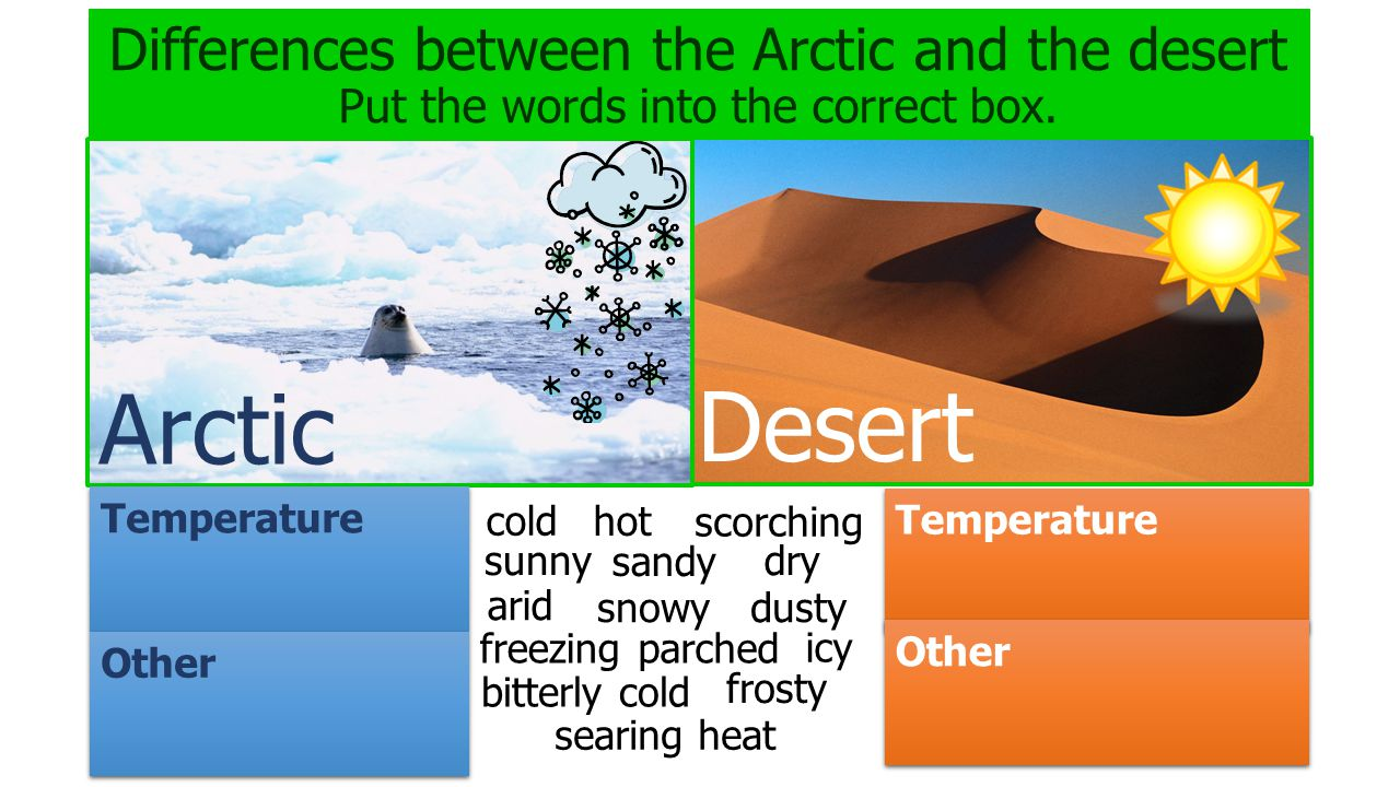 Differences between the Arctic and the desert Put the words into the correct box.