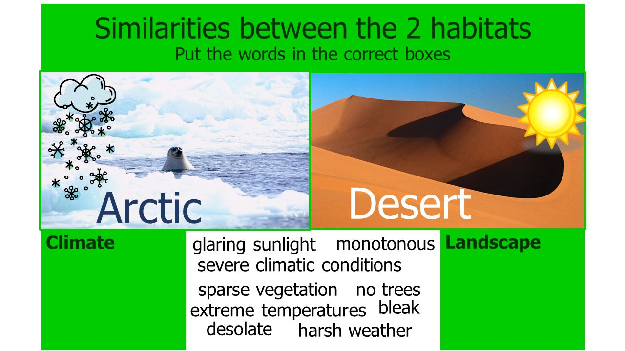 Similarities between the 2 habitats Put the words in the correct boxes