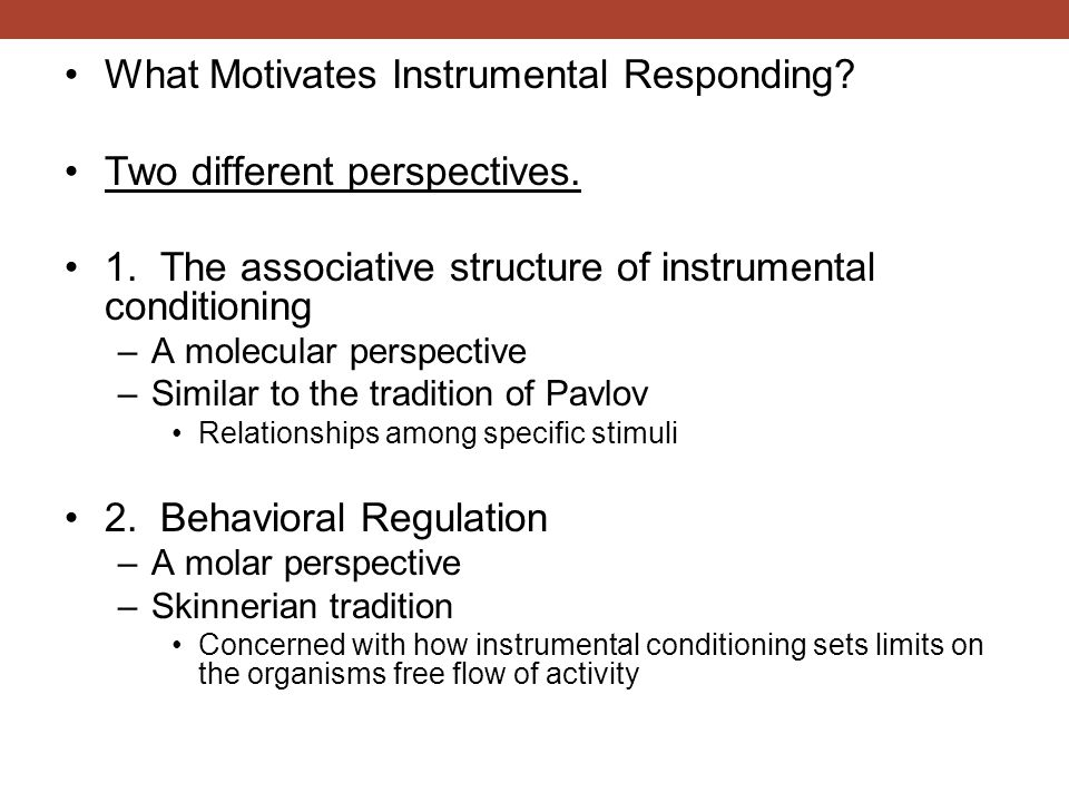 What Motivates Instrumental Responding Two different perspectives.