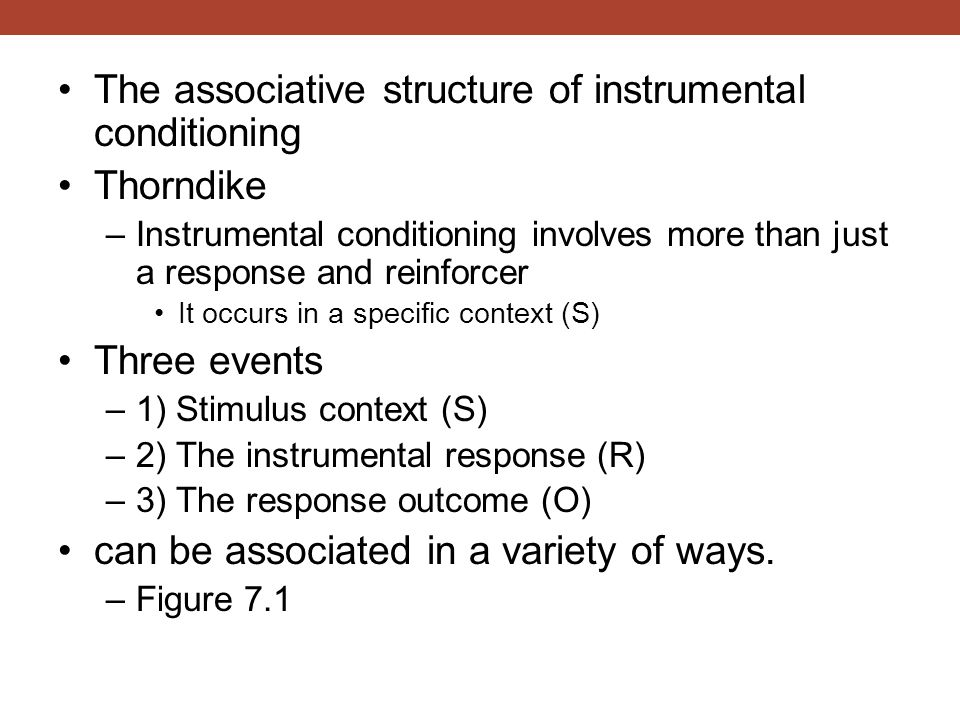 The associative structure of instrumental conditioning Thorndike
